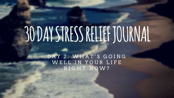 30 Day Stress Relief Journal – Day2